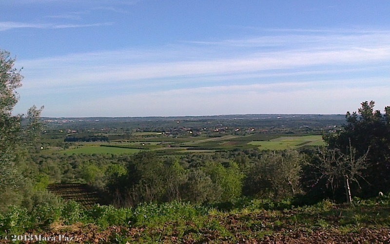 Fertile Silves - Algarve