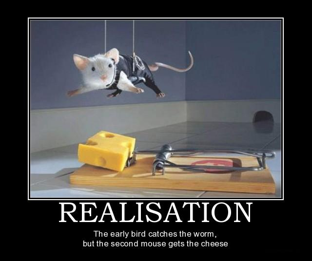 clever mouse trap funny - photo #2