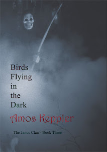 My novel Birds Flying in the Dark