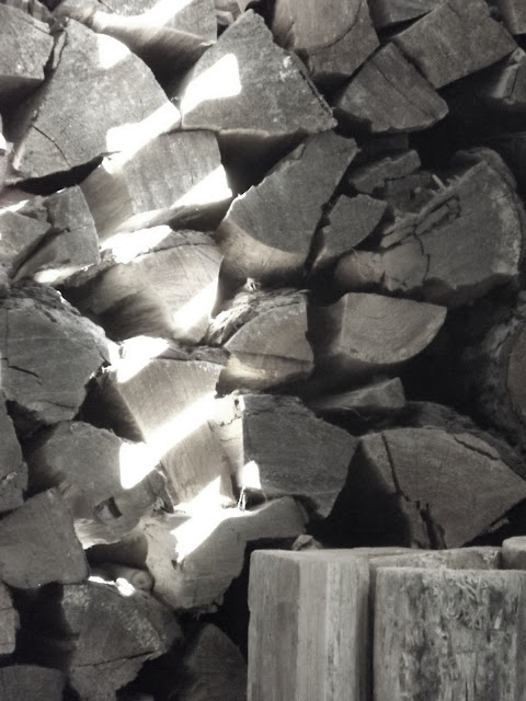 wood pile, stack of wood