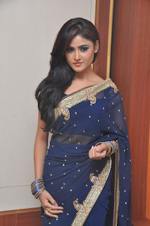 Sony Charishta Latest Pictureshoot Gallery in Blue Saree