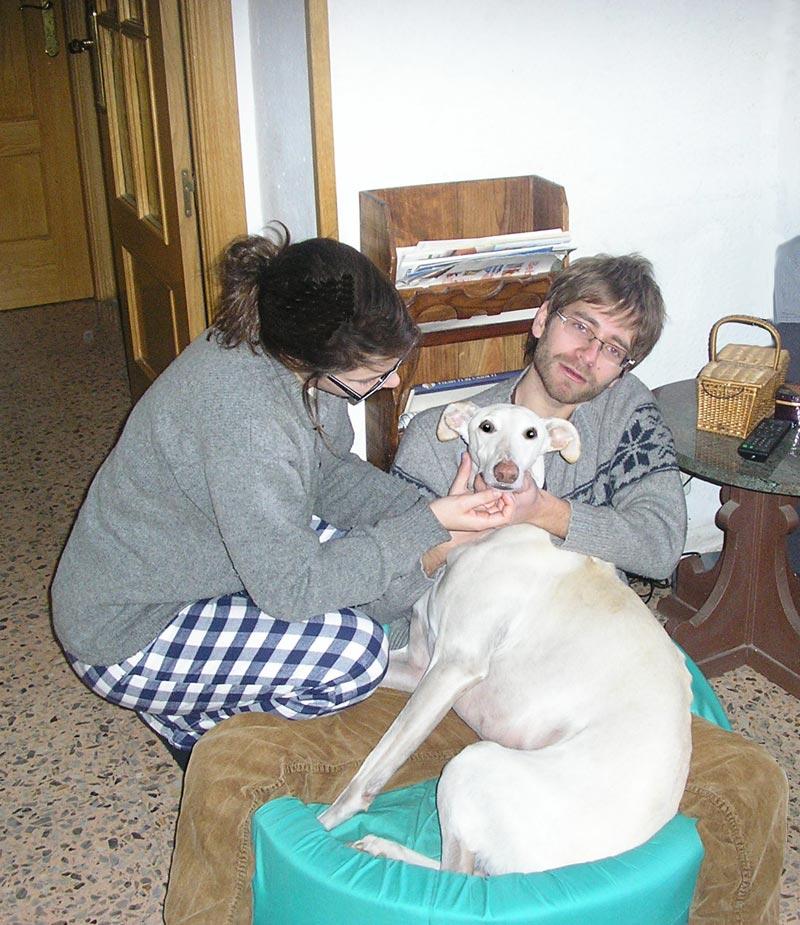 Badulake de ana como hacer una cama para un perro - Como hacer una cama para perro ...