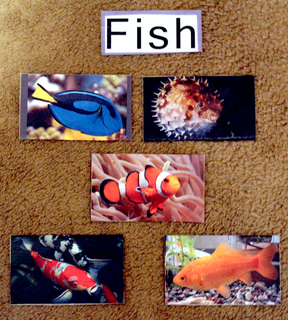 preschool ocean theme brilliant bundles fish crafts and activities for an 906
