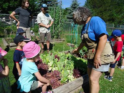 Gardening with Children Daycare Barrie
