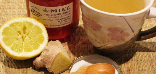 cara membuat sirup lemon jahe dingin kokilaki