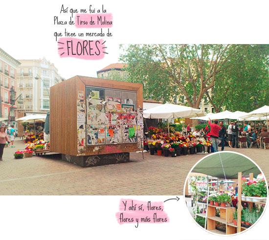Plaza de Tirso de Molina, Madrid - flores