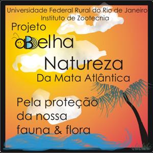 Projeto Abelha Natureza.