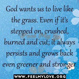 God wants us to live like the grass