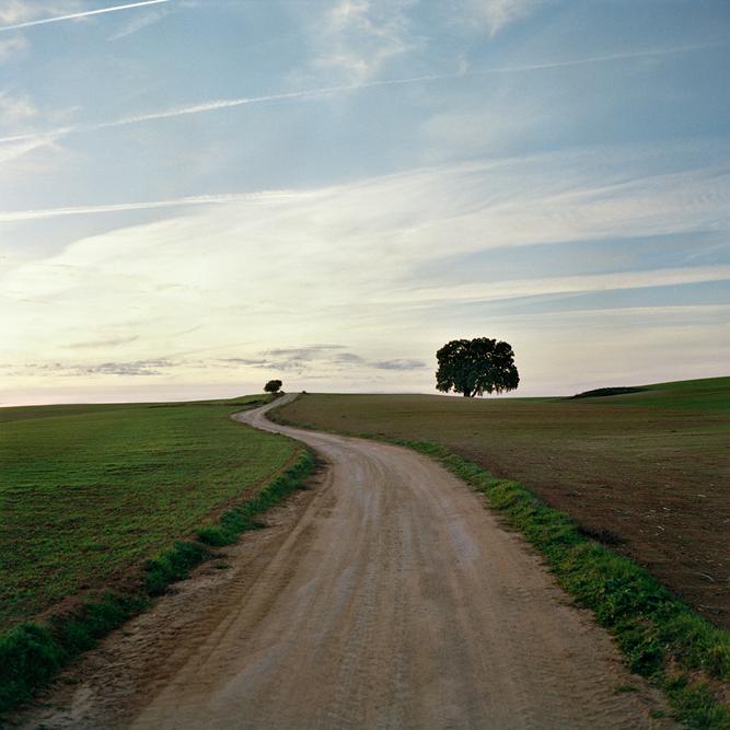 El Largo Camino A Casa.