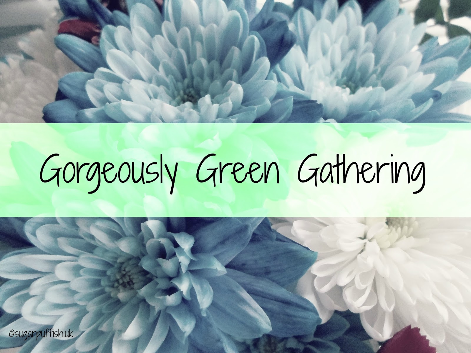 Gorgeously Green Gathering Blogger Meet Up