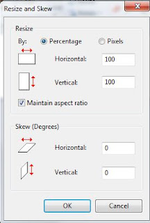 Resize and Skew screen in Microsoft Paint