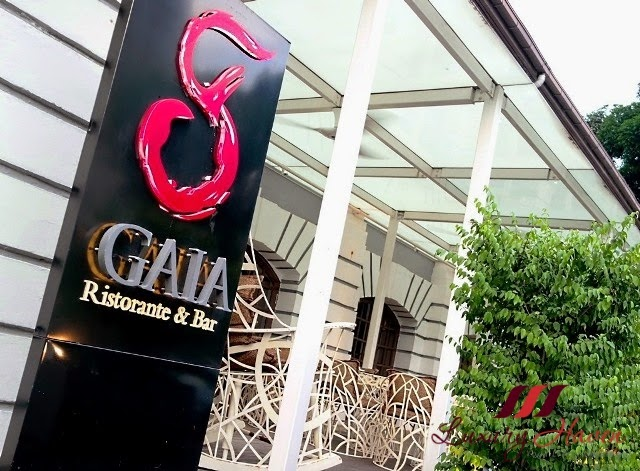 luxury haven reviews gaia italian restaurant