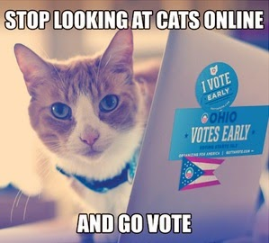 Poll Cat