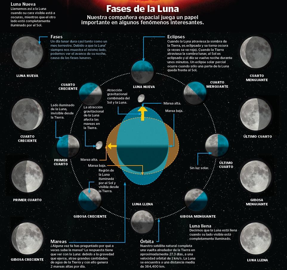 Fases de la luna con ciencia for Cuarto creciente zaragoza