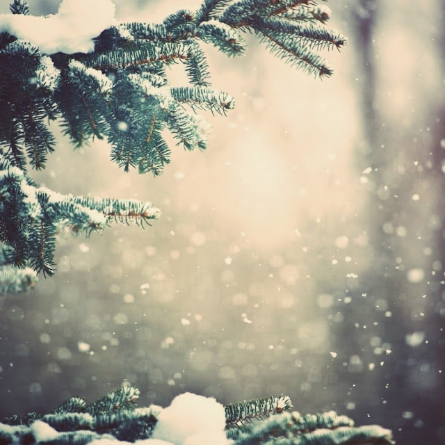 christmas winter ipad wallpaper 15