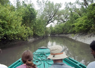 tourism photo of Sundarbans