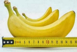 penis besar, penis panjang, cara alami besar alat vital, alat vital panjang, memperbesar alat kelamin pria