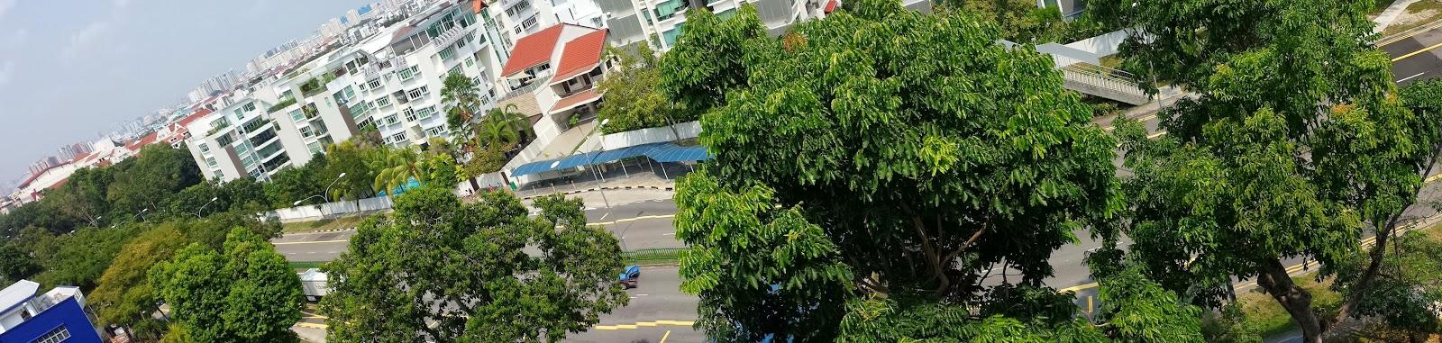 East coast line construction pre construction marine terrace for 12 terrace road post office