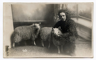 vintage black and white photo of sheep and a guy in sheep costume.