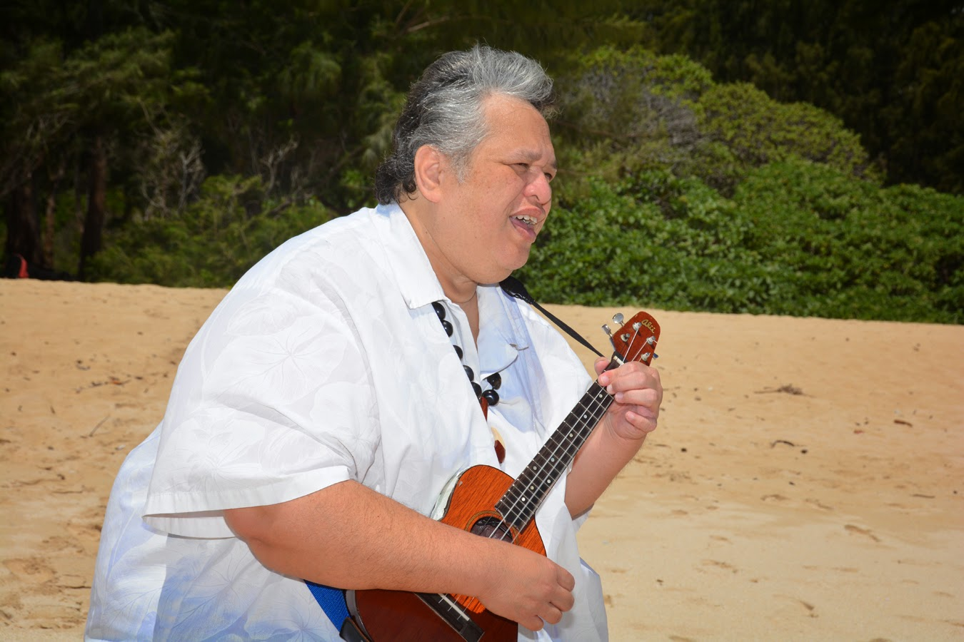 Hawaii Wedding Musicians