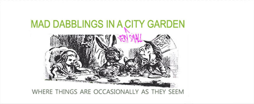 Mad Dabblings in a City Garden