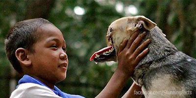 KABANG NAMED ONE OF WORLD'S TOP 10 HEROIC DOGS FOR 2012