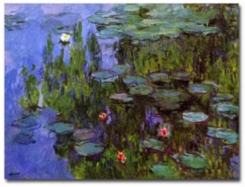 Sea Roses Monet