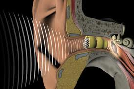Causes and Treatments for Hearing Loss