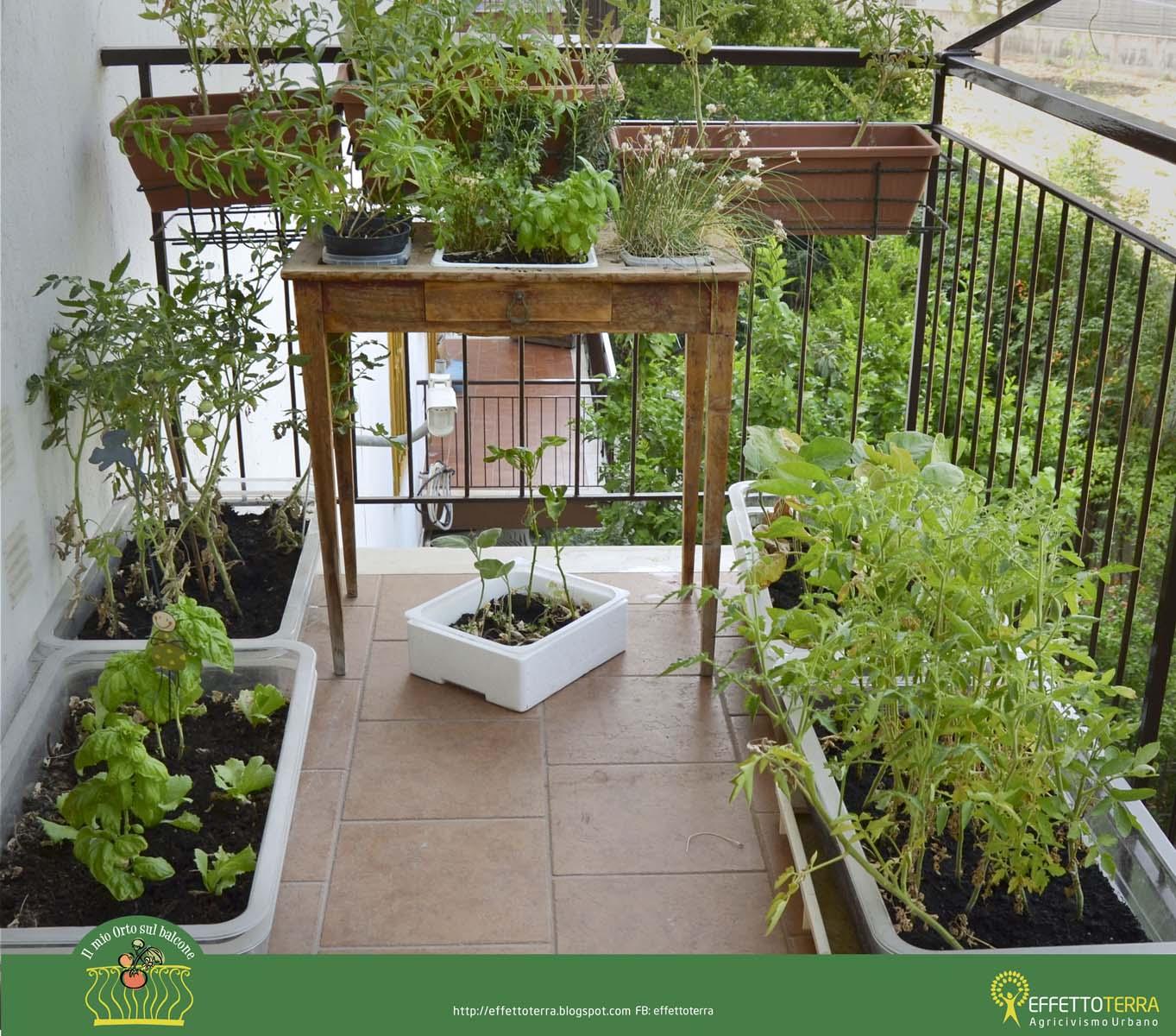 Effetto Terra: Il mio orto sul balcone