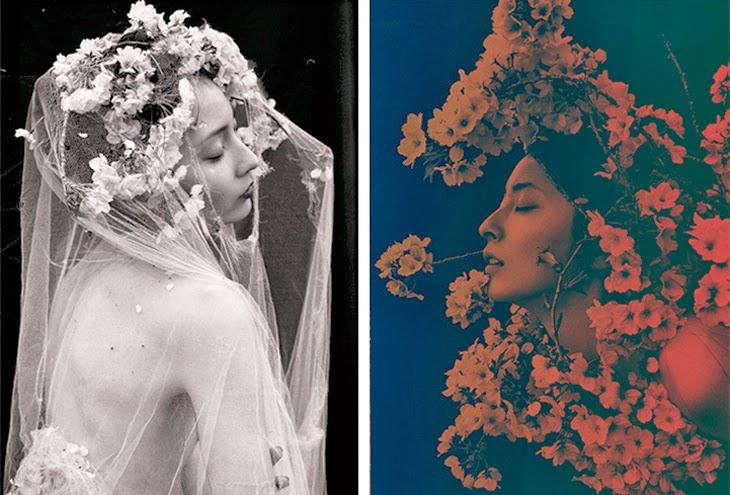 ©Sayaka Maruyama - Sakura. Fotografía | Photography