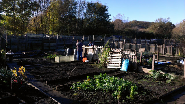 allotment blog