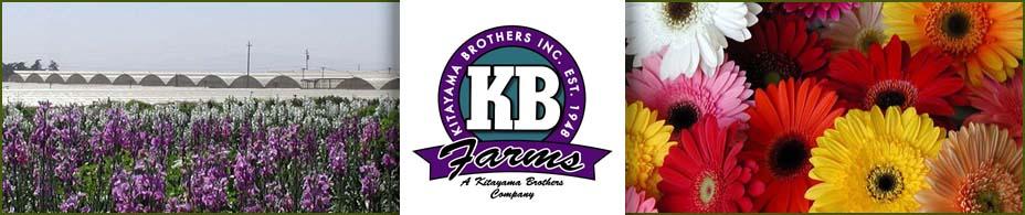 Kitayama Brothers Floral News