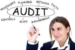Auditing Management Fees Inter-company earned