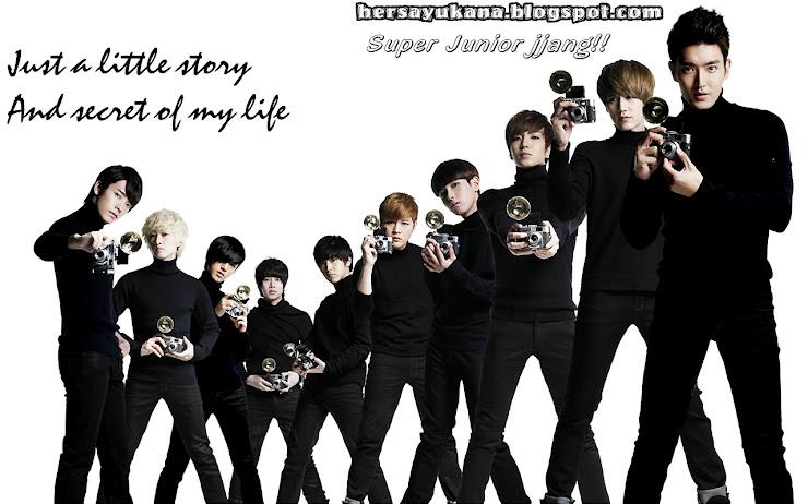 hersayukana.blogspot.com