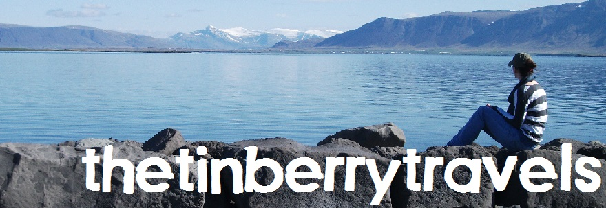 the tinberry travels