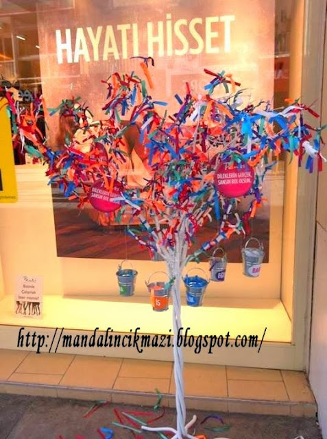 penti dilek ağacı