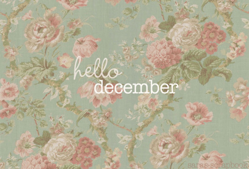 Hello December, Please Be Good To Me! Your Dear Friend, November Have Been  A Bitch To Me For A Month.