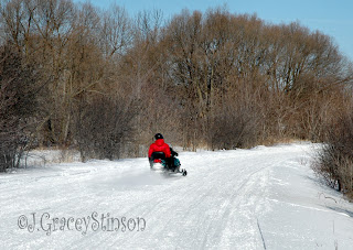 snowmobile trails and rider, Orillia, Ontario
