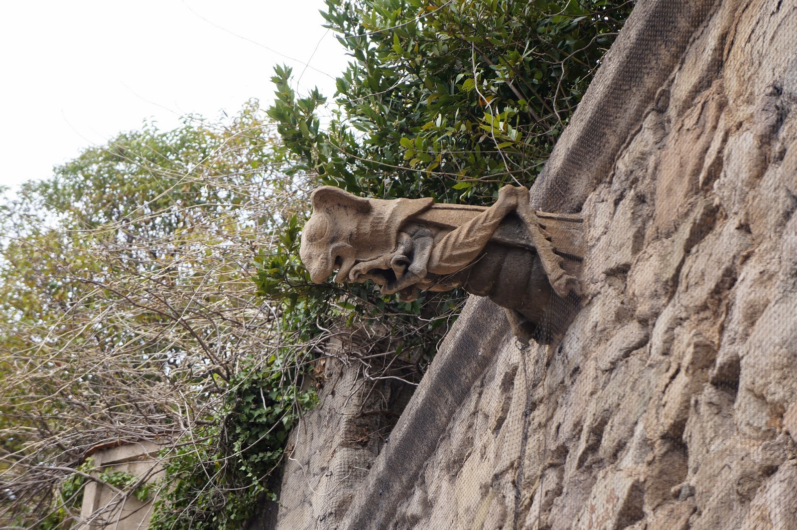 Grasshopper / locust gargoyle in Barcelona Spain