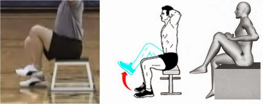 Resultado de imagen para psoas iliaco flexion de cadera