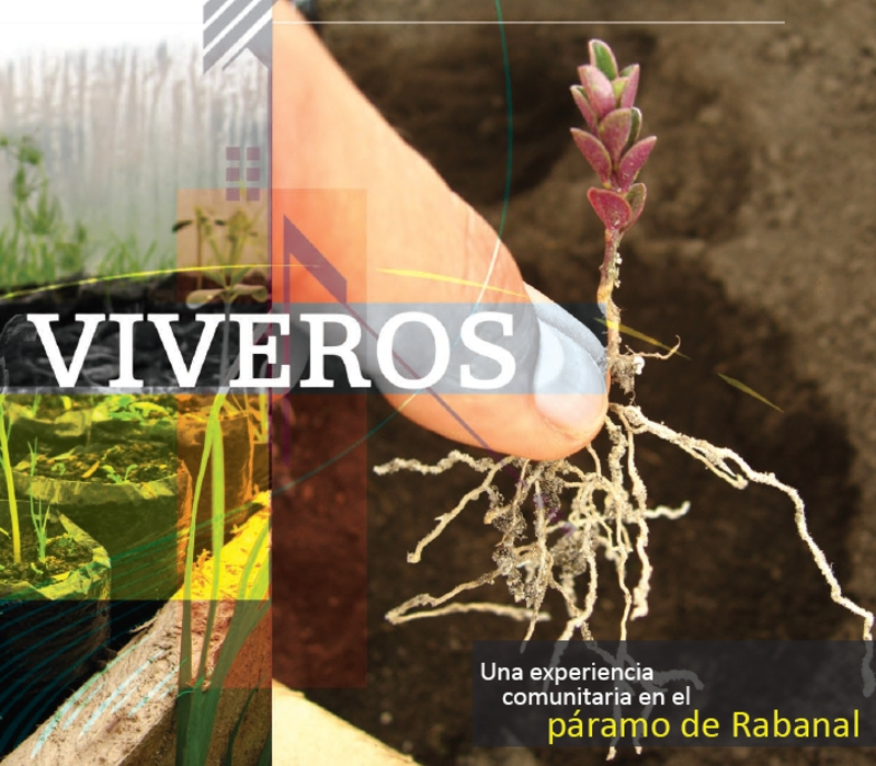 Ingenieria forestal documento viveros una experiencia for Viveros en colombia