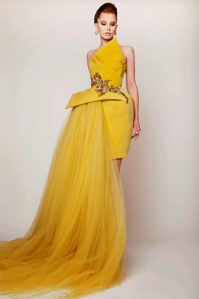 Beautiful Tropical Evening Gowns Illustration - Images for wedding ...