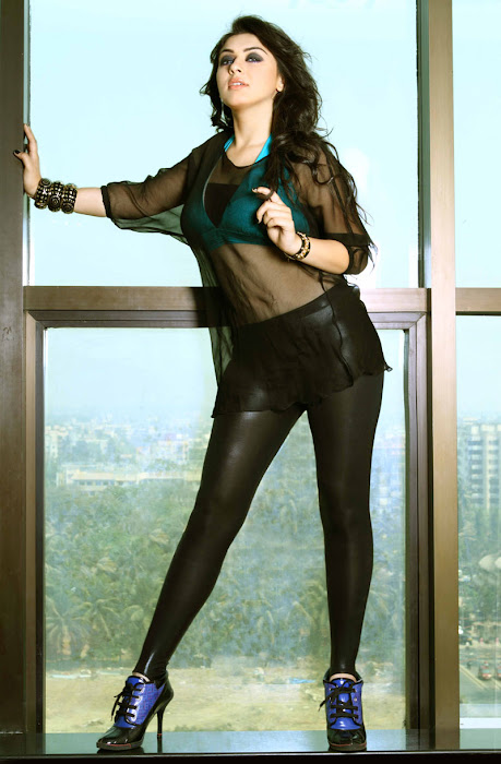 hansika motwani spicy unseen glamour  images