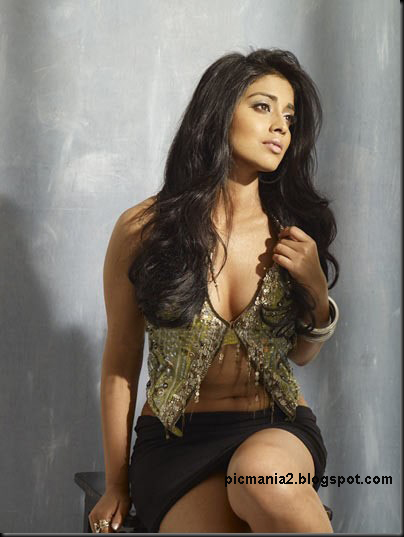 south indian actress Shriya Saran hot and sexy boobs showing pic