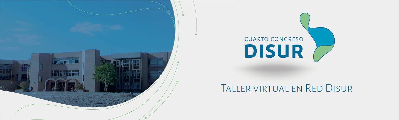 Taller Virtual en Red Disur