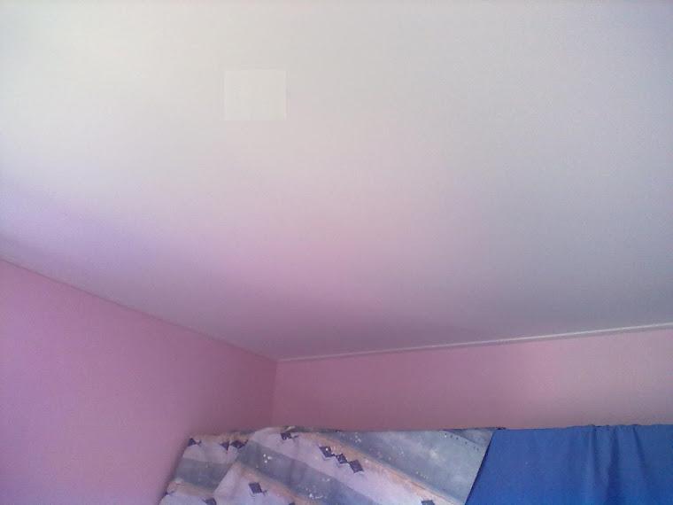 couleur plafond tendu
