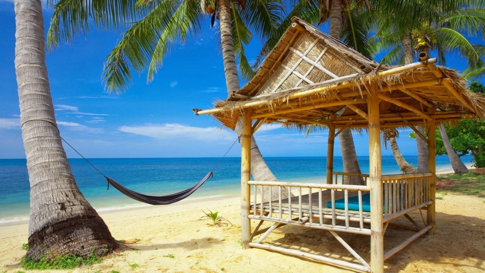 Afbeeldingsresultaten voor tropisch eiland