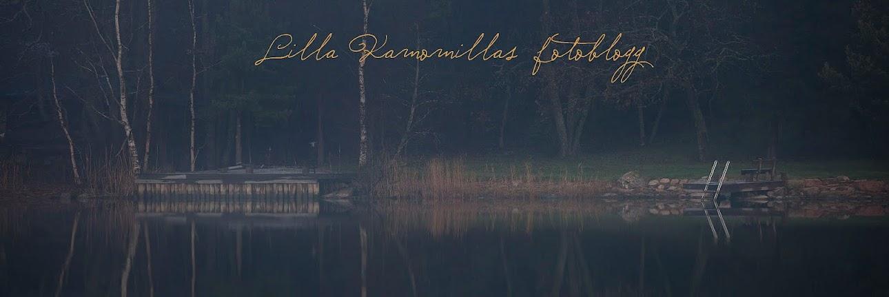 Lilla Kamomillas fotoblogg