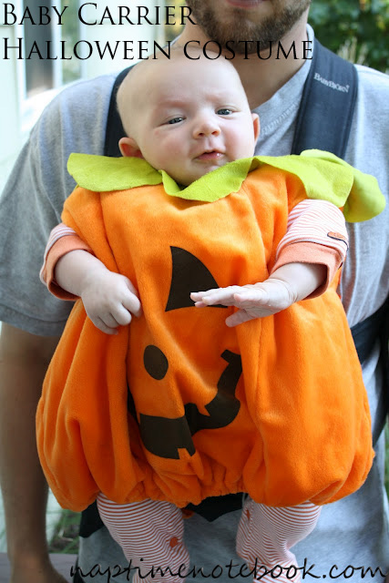 baby carrier halloween costume
