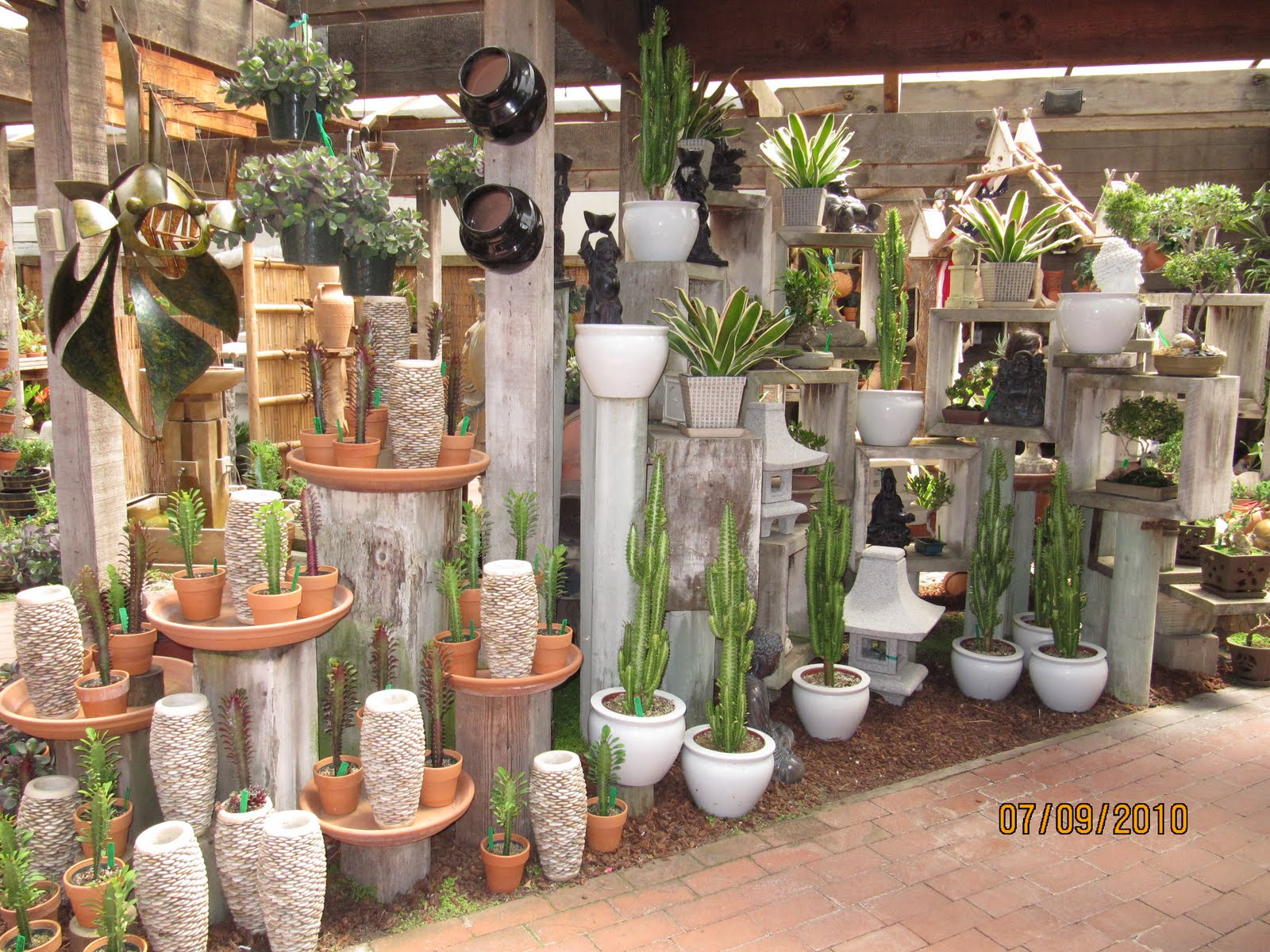 Cactus garden ideas landscape photograph pin potted cactus for Cactus garden designs